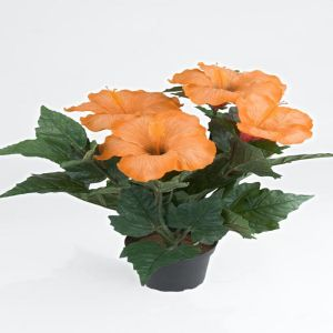 Hibiscus factice dans un pot H 38 cm 6 tetes Orange Safran