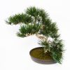 Bonsai factice Angel Pinus H 44 cm Finition mousse